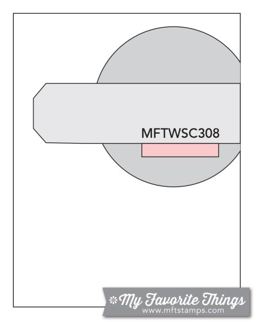 MFT_WSC_308